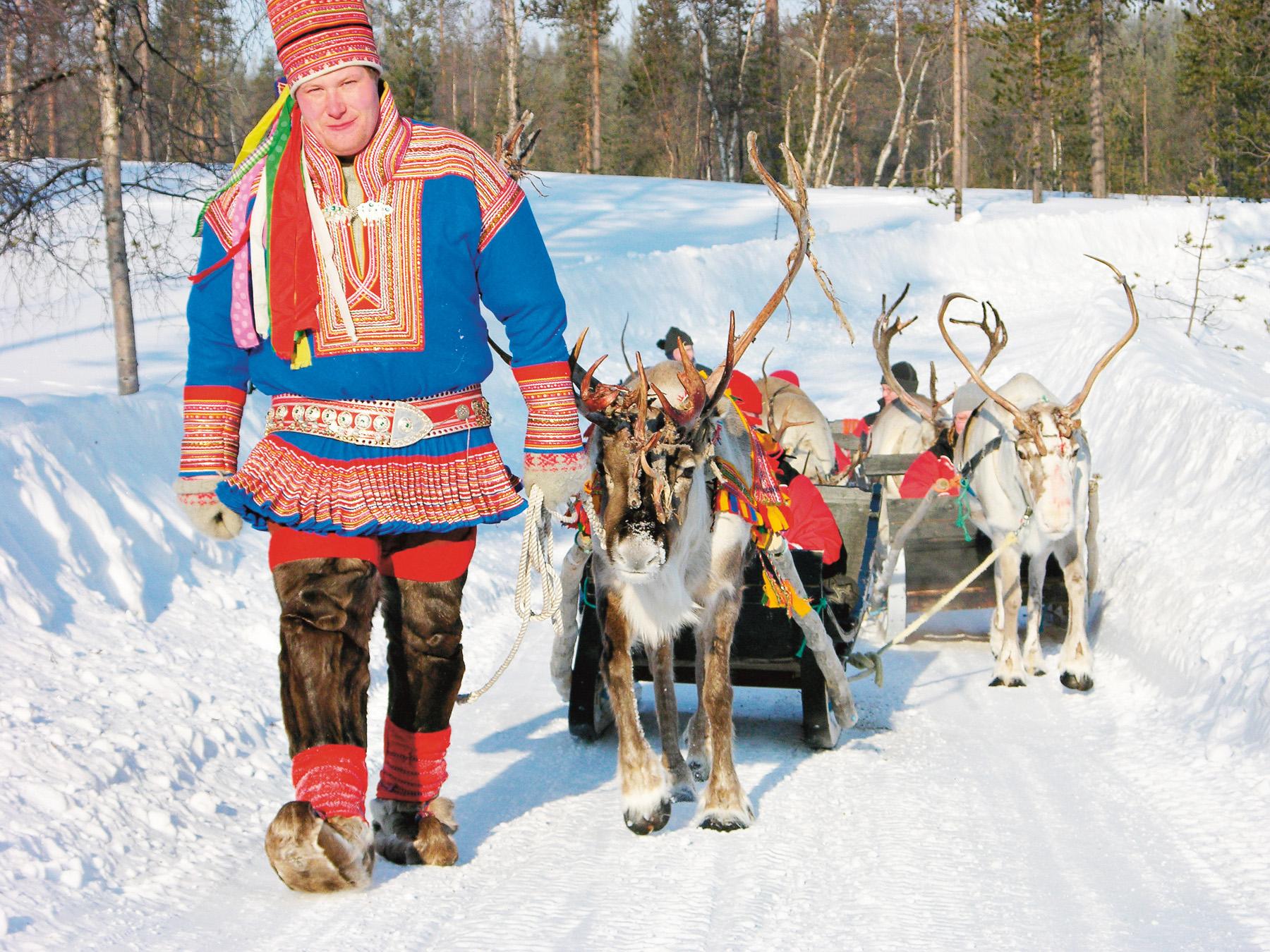 Reindeer_p37_3